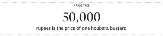 500001