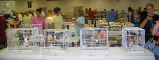 Visitors and vendors at the Southern Illinois Bird Fair in Collinsville.