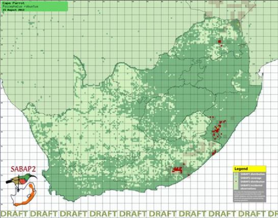 Southern African Bird Atlas Project 2 (SABAP2) data for the endemic Cape Parrot (Poicephalus robustus) in South Africa (http://sabap2.adu.org.za/spp_select.php)