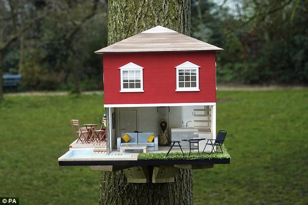 cornell university bird house plans