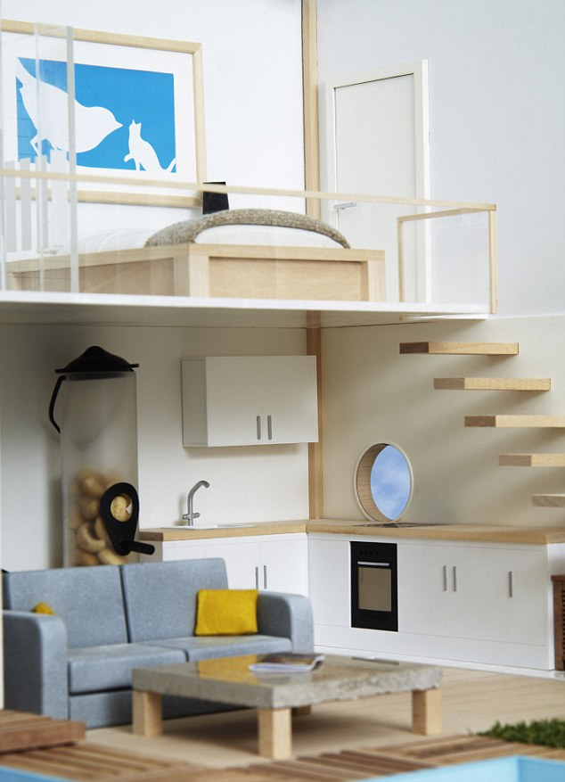 bird house plans cornell