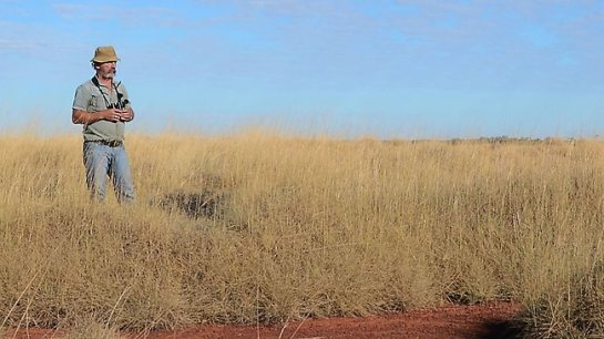 Bushman naturalist John Young, in night parrot territory, will announce his claimed finding in Brisbane next week. Source: Supplied