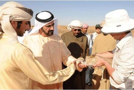 Dubai Ruler HHSheikhMohammed bin Rashid Al Maktoum funded the study into the endangered houbara bustard