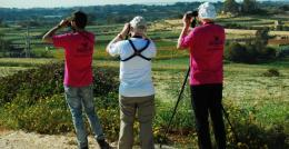 Birdlife Appeal to Make 2014 Last Year of Spring Hunting in Malta