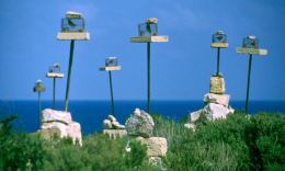 Conservationists and marksmen of Malta battle over annual bird hunt