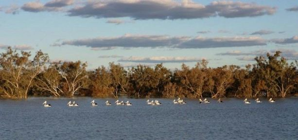 Queensland stakeholders welcome feds inquiry on Wild Rivers Act